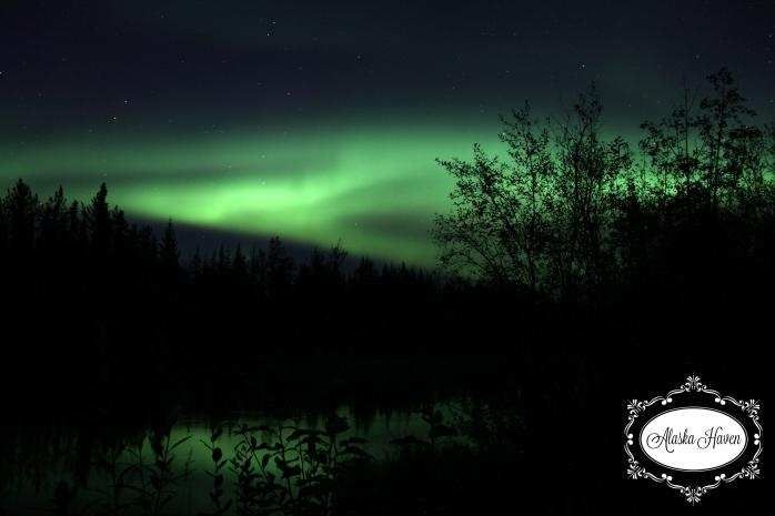 2016 Aurora Alaska Haven 1