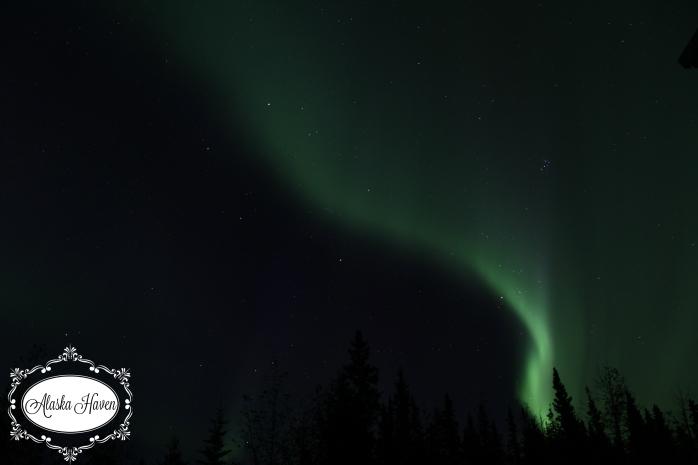 Aurora 2016 processed20_4